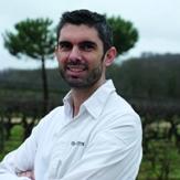 David Guitton, chef cuisinier de La Table de la Bergerie à Champ-sur-Layon