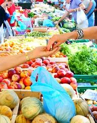 Marché Etude de marché Commerce