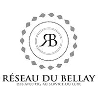 Témoignage Réseau du Bellay